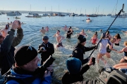 2016 polar bear swim