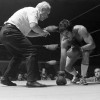 """April 9th, 1979 -- """"So You Wanna Fight"""" competition at the PNE Gardens. Referee is Dave Brown"""